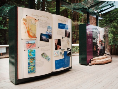 Rainforest geology notebook
