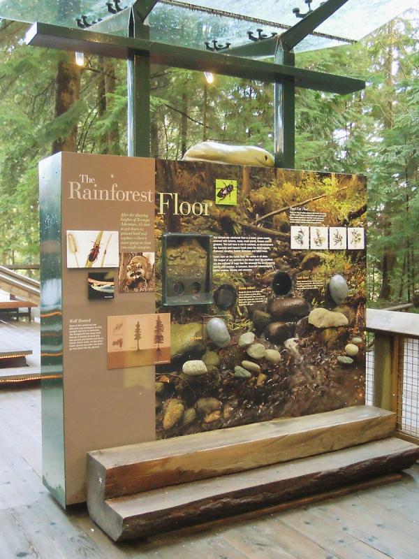 Rainforest floor panel